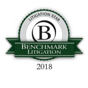 Benchmark Litigation - 2018